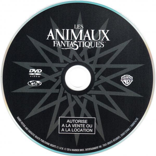 Les animaux fantastiques ( sticker )