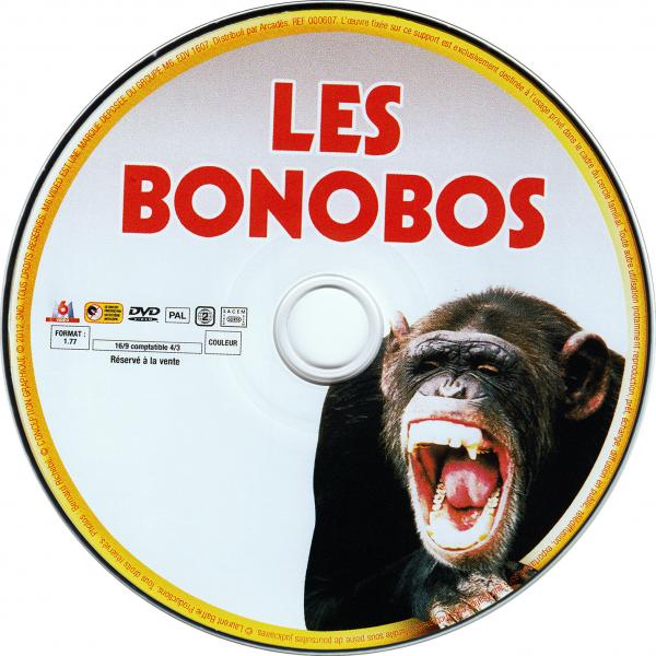 Les bonobos ( piece de theatre )( sticker )